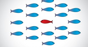 a sharp smart alert happy red fish with open eyes going in the opposite direction of a group of sad blue fishes with closed eyes : Be different or unique concept design vector illustration